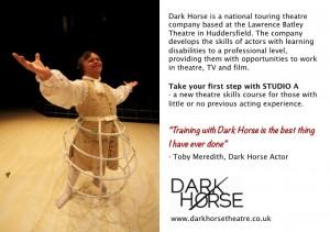 Dark Horse 2015 image